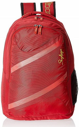 Skybags Router 26 Ltrs Casual Backpack At Rs 805 (70% off)+ 10% Cashback - Amazon